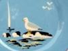 Babbacombe Pottery. seagull