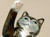 Brian Lowndes-Pateman cat