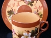 Watcombe Pottery Cup & Saucer with apple blossom
