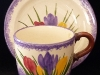 Longpark Pottery Cup and Saucer with Crocus pattern