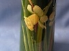 £66 Watcombe Daffodil Vase Sep'11