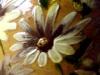 Exeter Art Pottery eap-floral-vase